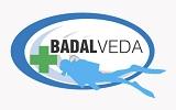 BADALVEDA Logo
