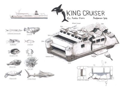 King Cruiser Wreck dive site map