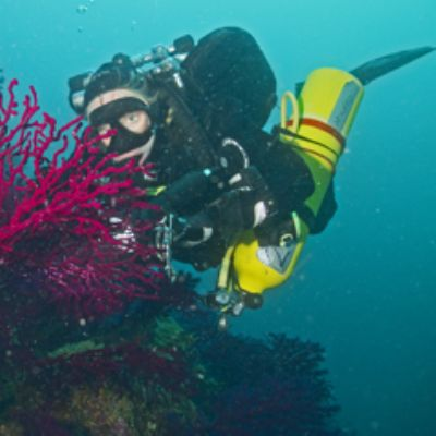 Scuba diver looking at micro organism in Croatia